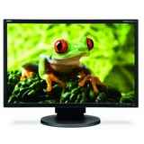 NEC Display MultiSync EA241WM-BK Widescreen LCD Monitor